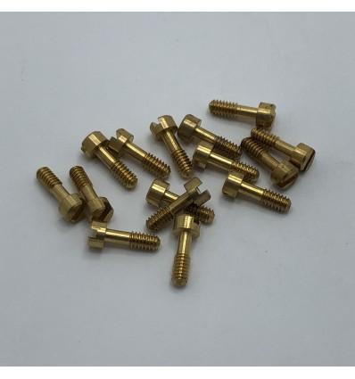 Tornillos basculantes 7 mm (10 u)